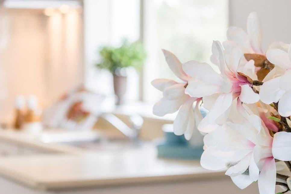 interior design services Auckland